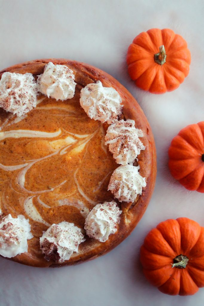 Finished pumpkin swirl cheesecake with whipped cream and cinnamon toppings. Pictured with mini pumpkins.